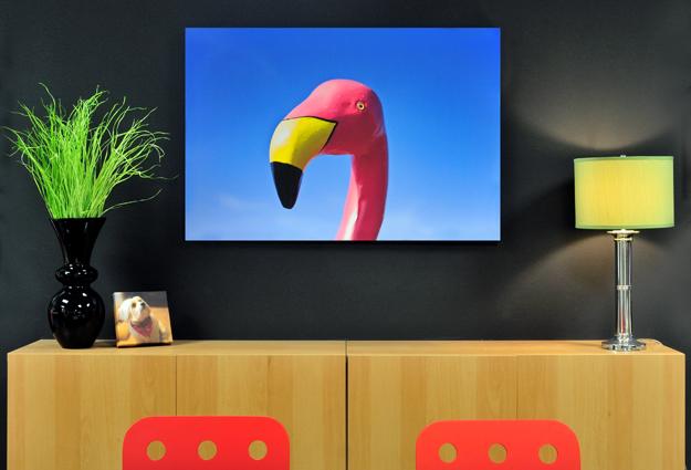 Flamingo Canvas Gallery Wrap 32x48